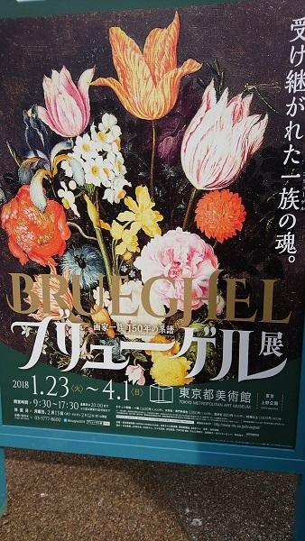 '18Feb ブリューゲル展.jpg